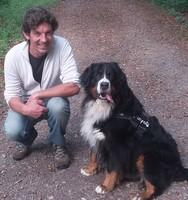 Hundehaftpflicht Vergleich ganz einfach