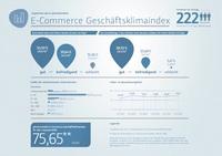 E-Commerce Geschäftsklimaindex