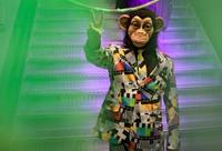 Year of the Monkey 2016: In Hamburg war der Affe los!