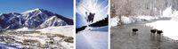 Idaho: Im Winter sind die Sterne im Sonnental