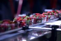 Blech-Software steuert Produktion hochwertiger Maschinen für die Nahrungsmittelindustrie