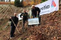 Helvetia Versicherungen und ForstBW pflanzen Eichenschutzwald