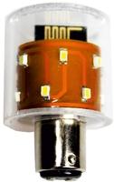 Ein intelligent vernetztes Leuchtmittel - Die Radio-Bulb von GEWATEC