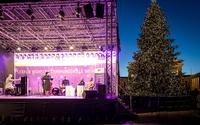 Weihnachtsbaum mit 30.000 Lichtern lässt den Pariser Platz erstrahlen
