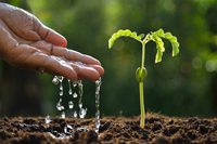 Neuer EIU Food Sustainability Index