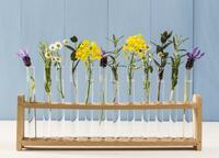 Frühjahrsputz: Strahlende Sauberkeit mit der Kraft der Natur