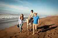 Auszeit für Familien im Mazagan Beach & Golf Resort