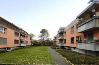 Familienfreundliche Wohnungen in Reinach