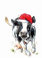 Preisvorteil für den Energieriesen sichern - Weihnachtsaktion bis 31.12.2016