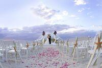 In St. Pete/Clearwater werden Hochzeitsträume wahr