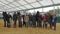 Pferdegestützte Führungsseminare und Teamtrainings