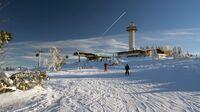 Immer beliebter: Ski-Nordisch - Für Skilanglauf-Fans ist Willingen ein Paradies