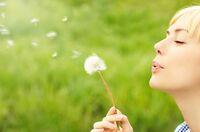 Wenn Pflanzenpollen die Luft abschnüren