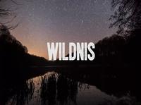 Entdecke Wildnis! Neuer Film für Wildnis in Deutschland