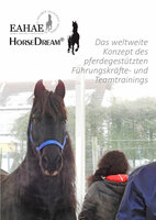 Mit Pferden Führen erleben