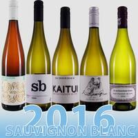 Die Pfälzer Kultwinzer Sauvignon Blancs 2016