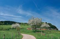 Die Gemeinde Willingen im Sauerland ist ein Magnet für Wintersportfans und Wanderliebhaber