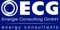 Energiesparen für Kommunen: Energieeffizienz-Netzwerke der ECG