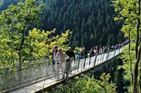 Hängeseilbrücke Mörsdorf - Ein weiteres Mosel Erlebnis