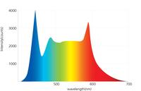 Dem Sonnenlicht ähnlich: LED-Lampen von euroLighting