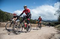 Gravel-Bike - mit dem Rennrad über Stock und Stein