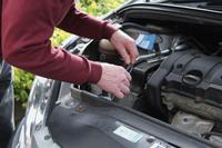 Marder-Attacken im Motorraum: kleine Bisse, große Schäden