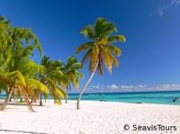 Karibische Träume in der Dominikanischen Republik nachhaltig erleben