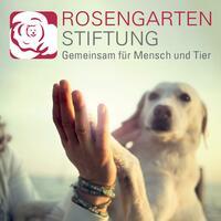 Gründung der ROSENGARTEN-Stiftung