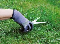Tipps zur Rasenpflege von der AGRAVIS Raiffeisen AG