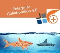 Wie führt man Enterprise Collaboration 4.0 Lösungen ein?