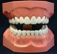 25 Jahre schöne Zähne für alle