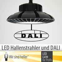 LED Hallenstrahler und DALI