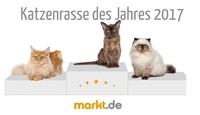 Tierumfrage: markt.de wählt die Katzenrasse des Jahres 2017