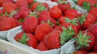Erdbeeren zu Weihnachten?