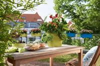 Urban Gardening mit LECHUZA