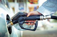 Verzicht auf Palmöl in Biokraftstoffen