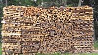 Heizen mit Holz: Natürliche Energie mit regionaler Wertschöpfung