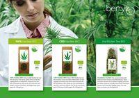 Wunderpflanze Hanf: Viel mehr als CBD & THC