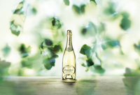 Das Haus Perrier-Jouët präsentiert seinen neuen Blanc de Blancs  Eine Hommage an die Chardonnaytraube