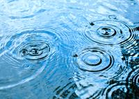 Regenwassernutzung für Haushalt und Garten