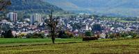 Mit gutem Essen geht es besser in der Gesunden Gemeinde Eningen