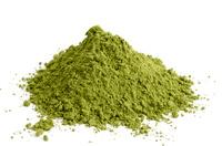 Moringa Oleifera - Der neue Star unter den Superfoods