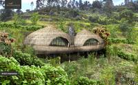 Naturschutz und Gorilla Tracking in Ruanda, Ostafrika