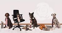 Aktionstag Kollege Hund: Abbau von Berührungsängsten