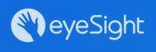 eyeSight Technologies gewinnt Car HMI Award für das nutzerfreundlichste HMI Feature