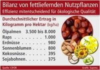 Bilanz von fettliefernden Nutzpflanzen