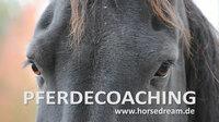 """Ausbildung zum """"Pferdecoach"""" - HorseDream in Ungarn"""