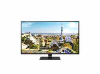 Der 43 Zoll 4K Ultra HD IPS-Monitor LG 43UD79-B: Multitasking-Gigant mit überragender Schärfe