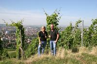 Neuer Internetauftritt mit allen Infos rund um das Heilbronner Weindorf