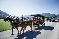 Pferdestärken am Tegernsee